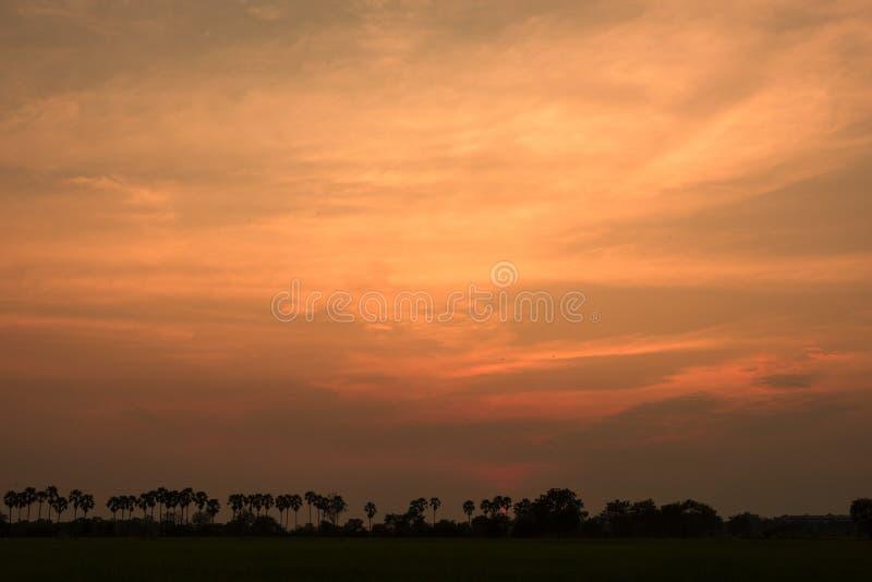 在一个领域在乡下,自然日落日出Ove的日落 图库摄影