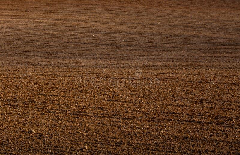在一个领域的一个美好的棕色样式在春天 抽象,织地不很细背景 免版税库存图片