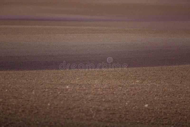 在一个领域的一个美好的棕色样式在春天 抽象,织地不很细背景 库存照片