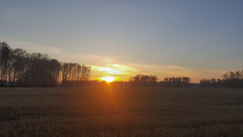 在一个领域的日落在城市之外 库存照片