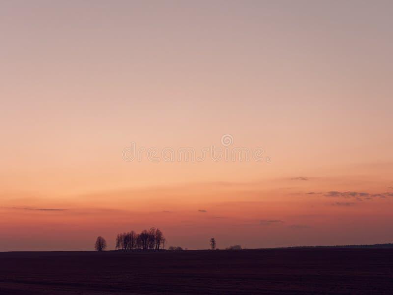 在一个领域的美丽的梯度天空在日落 免版税图库摄影