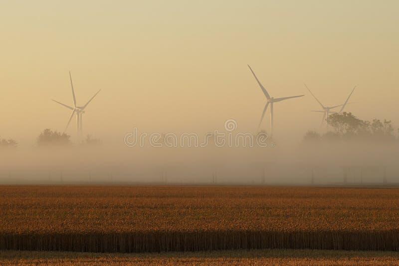 在一个领域的风轮机在一个有雾的早晨 免版税库存照片