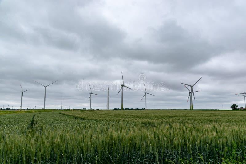 在一个领域的风轮机在德国 库存照片