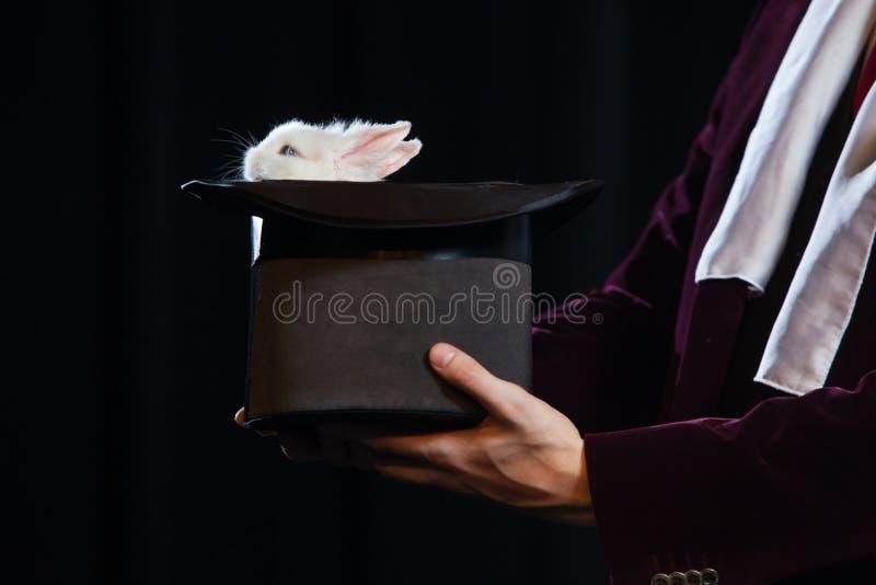 在一个魔术师帽子的小的兔子在黑背景 免版税库存图片