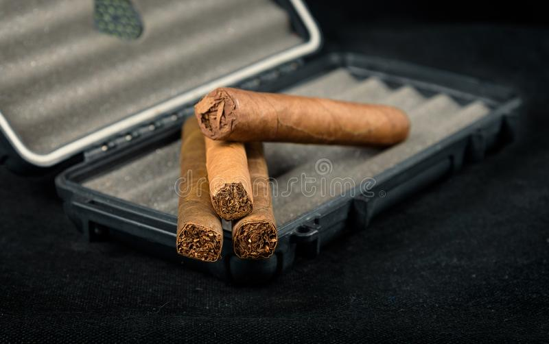 在一个黑旅行雪茄盒顶部的雪茄 富有的嗅到和textu 库存图片
