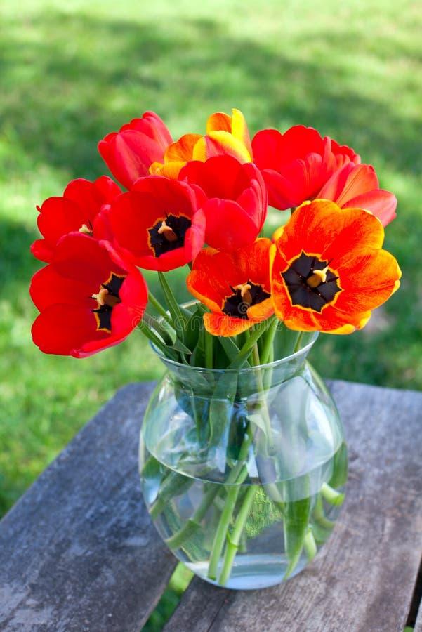 在一个玻璃花瓶的郁金香在庭院桌上 库存图片