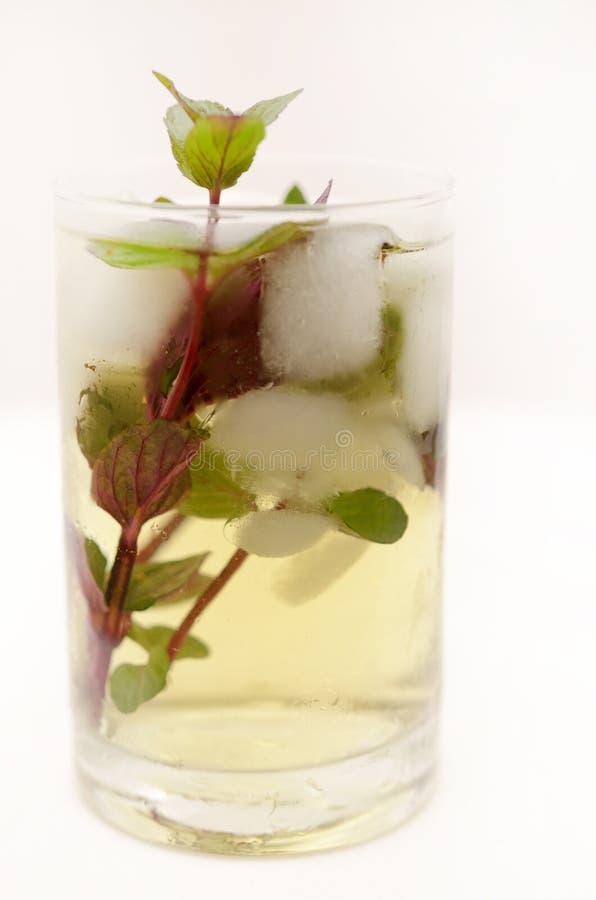 在一个玻璃觚的肯塔基德比饮料在轻的背景 库存照片