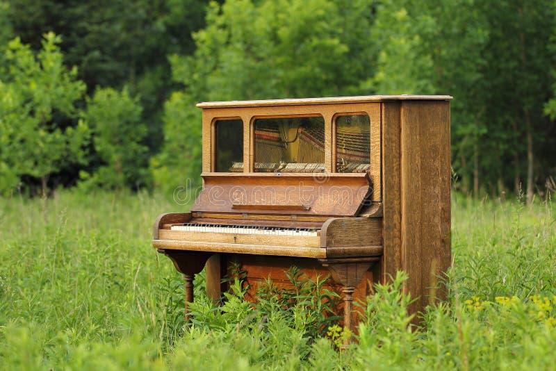 在一个绿色领域放弃的老大钢琴 免版税库存图片