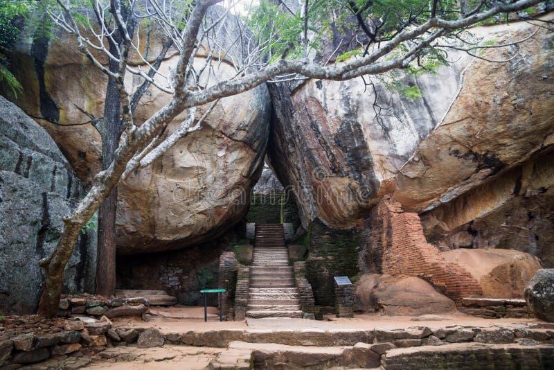 在一些巨大的橙色岩石之间的台阶与树在锡吉里耶,斯里兰卡 库存照片
