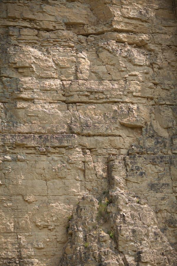 在一件表面猎物的印象深刻的巨大的陡峭的墙壁,石纹理 免版税库存照片