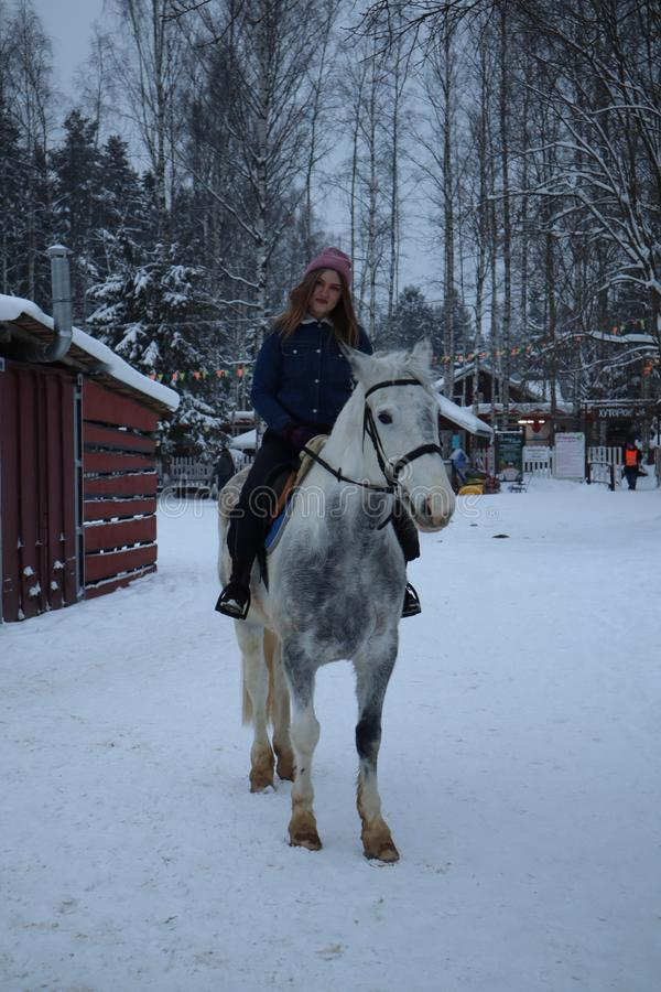在一匹米黄马的美好的欧洲女孩骑马在拥抱马的冬天森林妇女 库存照片