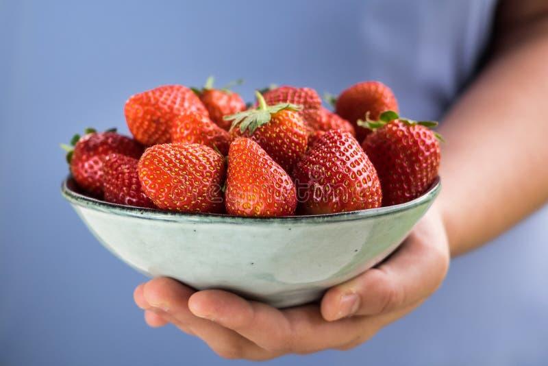 在一只手上举行的一碗草莓由淡色蓝色衣服的一个女孩 库存图片