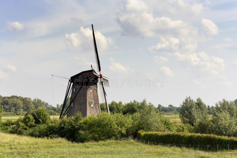 在一台典型的历史风车的看法在荷兰风景 库存图片