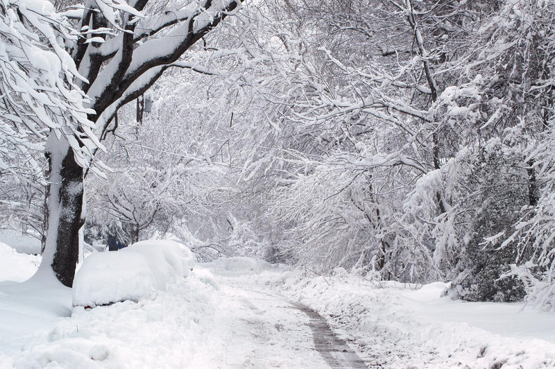 冬天足迹 图库摄影