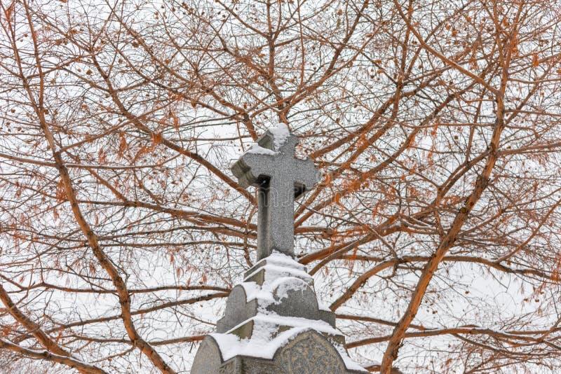 在一块墓碑顶部的十字架在一座公墓在与雪的冬天和一棵光秃的树在背景中 库存图片