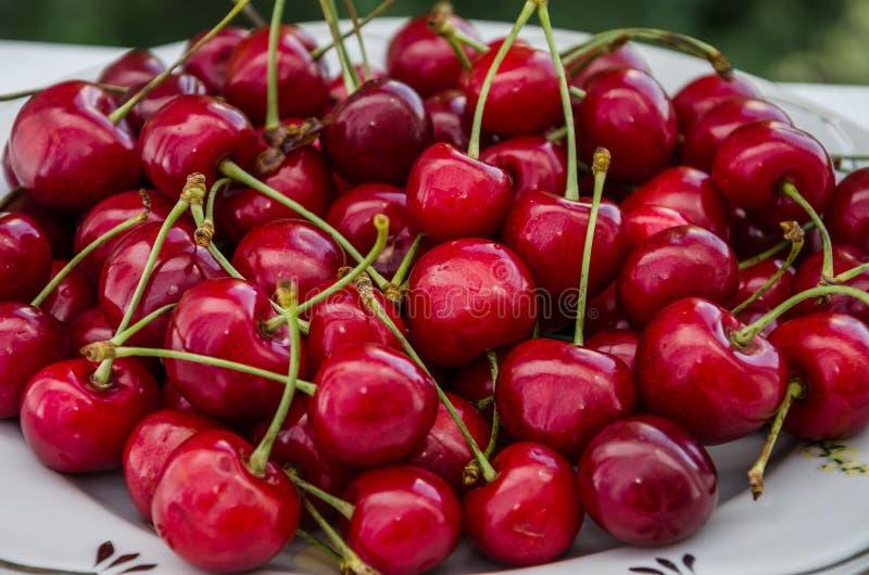 在一块板材的红色甜樱桃在白色背景 r 免版税库存图片