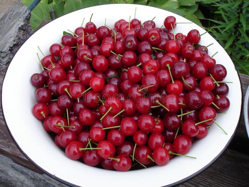 在一块白色板材的大红色樱桃 免版税库存图片