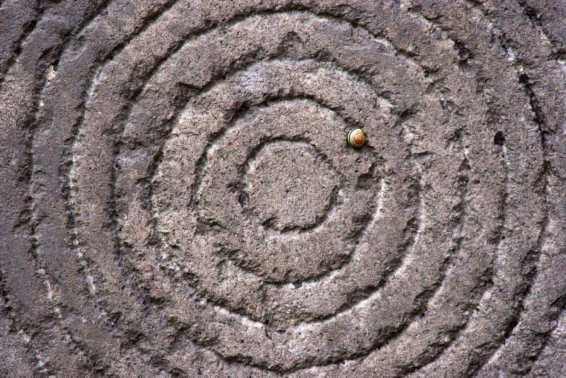 在一块石头的圈子与蛇 免版税库存图片