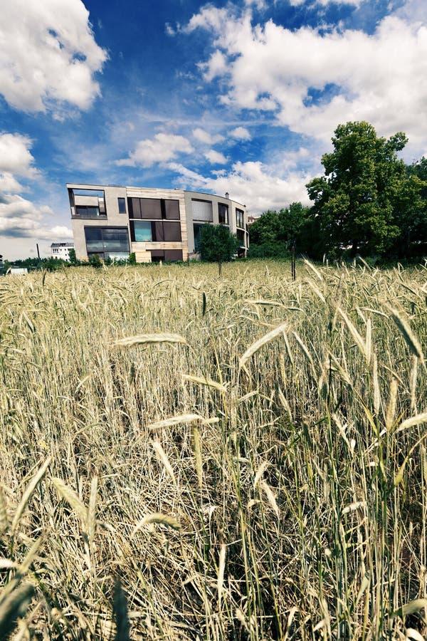 在麦田之后的后现代的建筑学 图库摄影