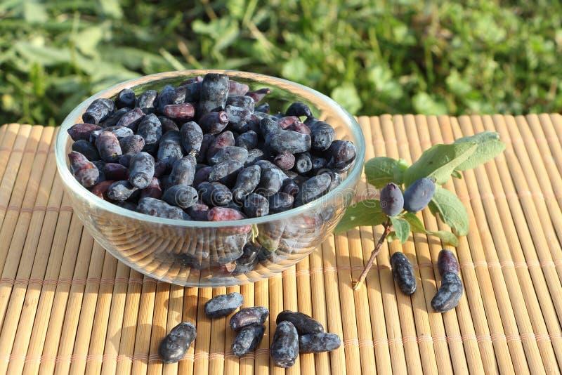 在一块玻璃板的忍冬属植物莓果 免版税库存照片