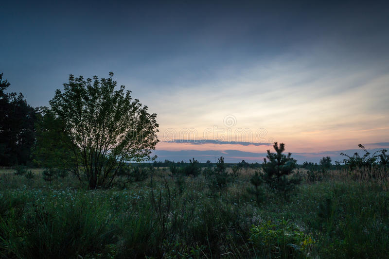 在一夏天夜间的日落 免版税库存照片