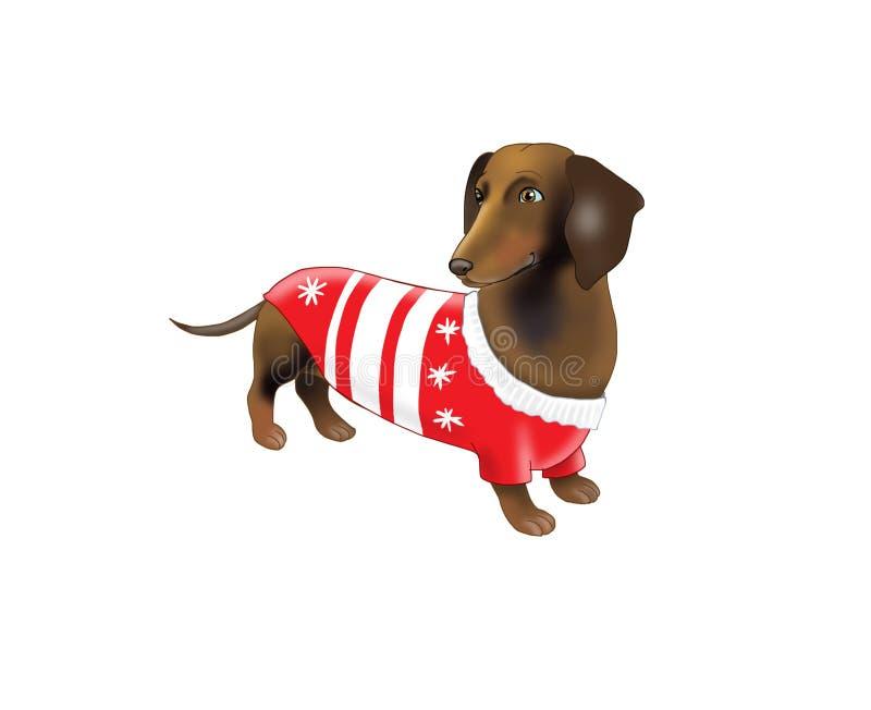 在一套新年衣服的达克斯猎犬 库存例证