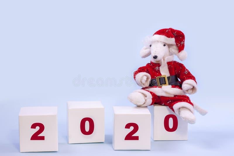 在一套红色圣诞老人项目衣服的一只逗人喜爱的白色鼠坐与第的白色立方体2020年在蓝色背景 2020年的标志在 库存照片