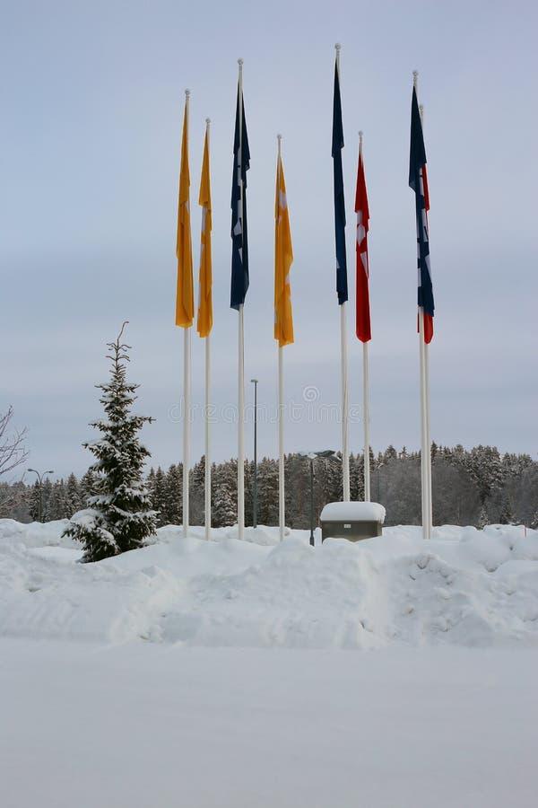 在一寒冷冬天天期间,宜家家居旗子 库存图片