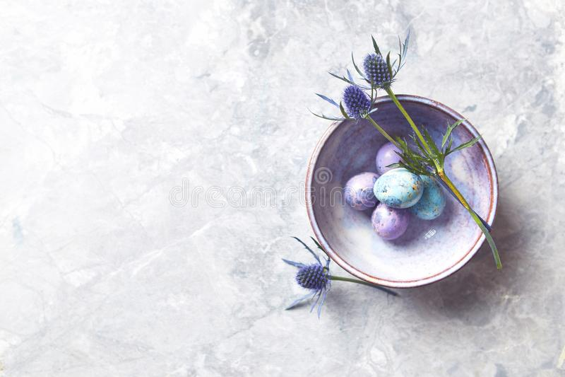 在一层陶瓷碗舱内甲板的色的鹌鹑蛋和海霍莉花放置安排 向量例证