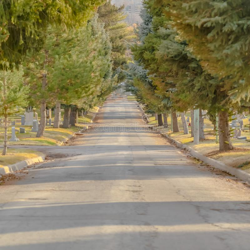 在一座公墓的被日光照射了路在盐湖城犹他 库存图片