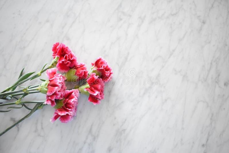 在一张大理石桌上的桃红色康乃馨 免版税库存照片