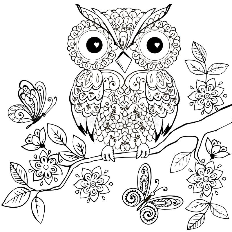 在一张开花的分支彩图的装饰猫头鹰成人的 反重音着色页的手拉的装饰猫头鹰 向量例证