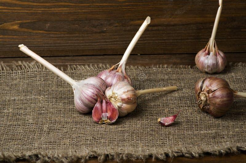 在一张木桌上的有机大蒜在背景中 免版税库存照片