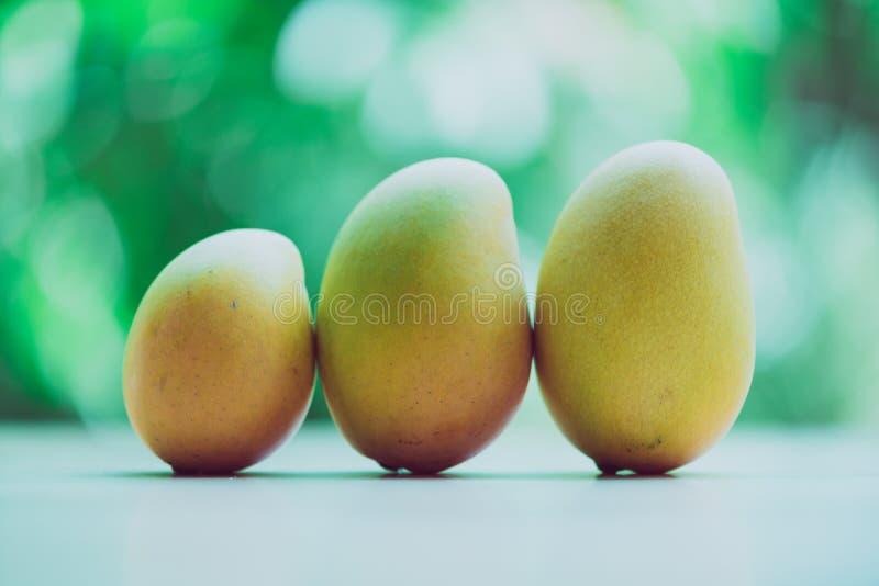 在一张木桌上的芒果有绿色背景 免版税库存照片