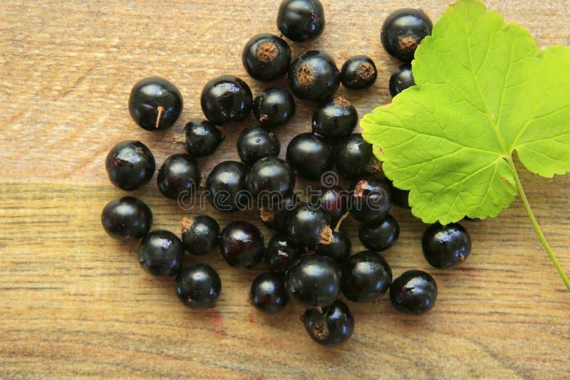 在一张木桌上的黑醋栗莓果 库存照片