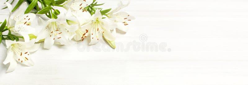 在一张白色木背景顶视图隔绝的白百合框架  开花百合美丽的花束白花 免版税库存图片