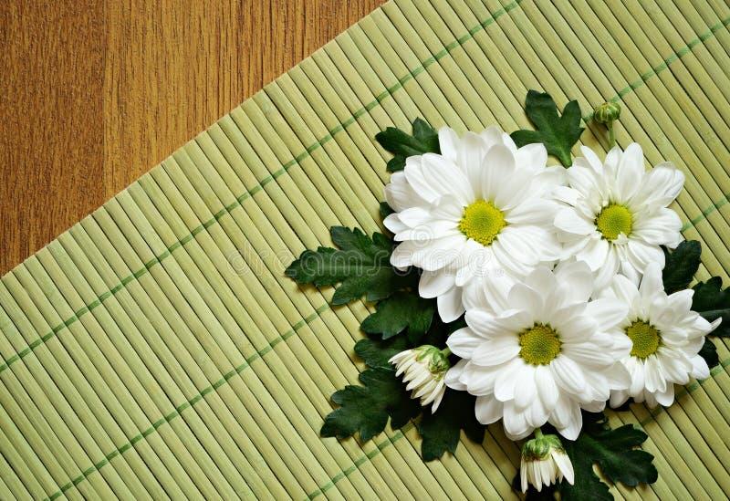 Download 在一张竹席子的雏菊 库存图片. 图片 包括有 对角, 启发, 春黄菊, 颜色, 空间, 绿色, 装饰, 工厂 - 30333773