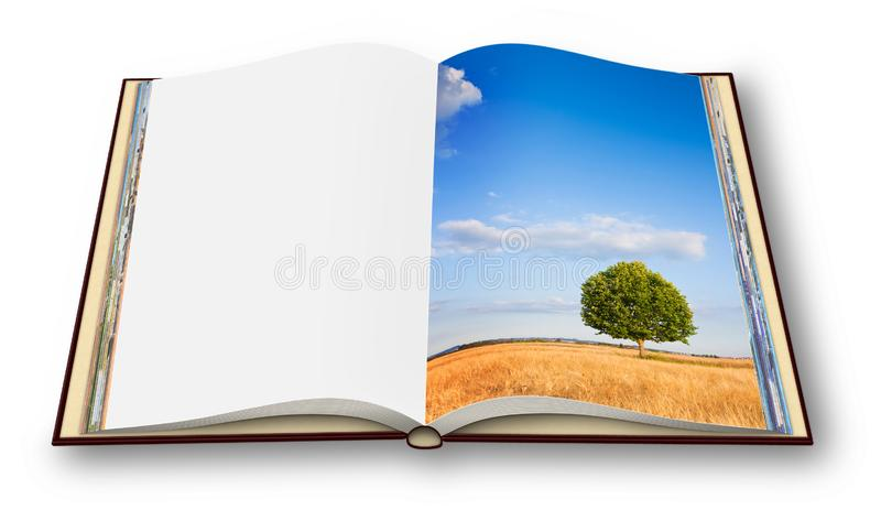 在一托斯坎wheatfield的遥远的树-托斯卡纳-意大利-打开了在白色背景隔绝的photobook -我是版权拥存者 免版税图库摄影