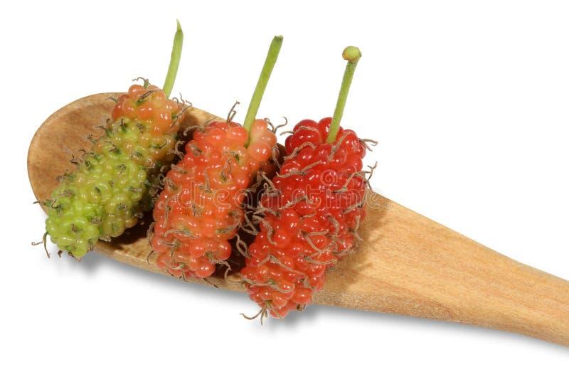 在一把木匙子和桃红色和红色桑树安置的绿色 免版税库存照片