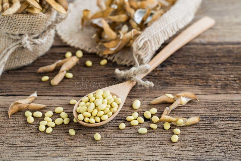 在一把木匙子的大豆 免版税库存图片