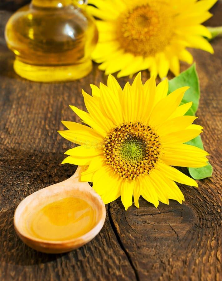 在一把木匙子的菜油用向日葵 库存图片