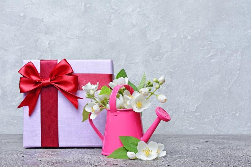 在一把装饰庭院喷壶和礼物盒的开花的茉莉花 库存图片