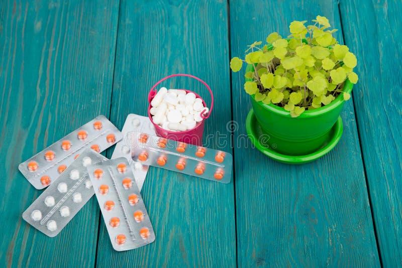 在一朵桃红色桶和花的许多不同的药片在蓝色木 免版税图库摄影