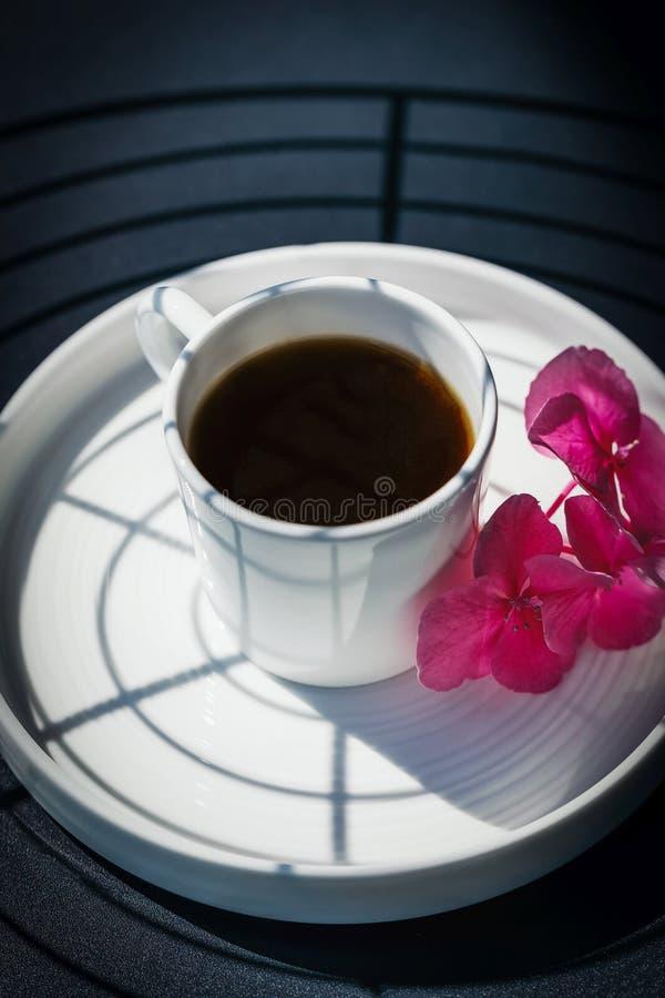 在一朵白色杯子和美丽的桃红色八仙花属或霍滕西亚花的无奶咖啡 阴影样式 免版税库存图片