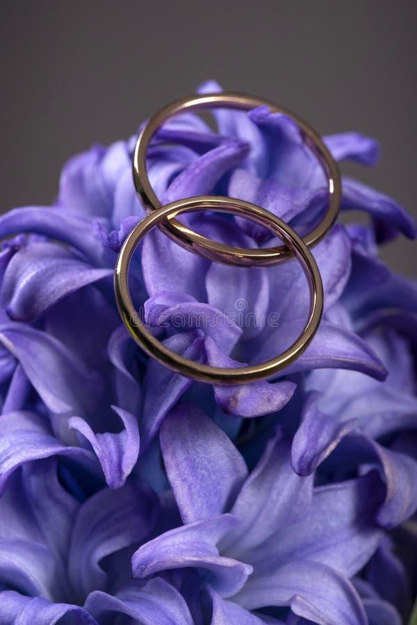 在一朵美丽的蓝色花的两结婚戒指作为开花的浪漫爱的标志 库存照片