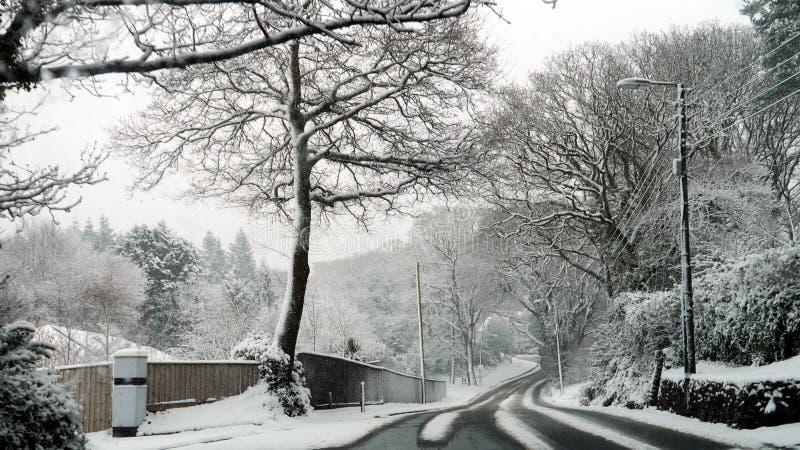在一条乡下公路的斯诺伊场面在Budleigh Salterton德文郡在英国 免版税库存图片
