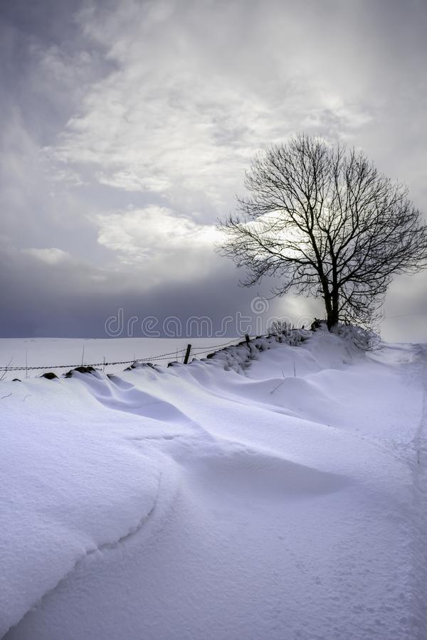 在一条农村路的雪漂泊 库存图片