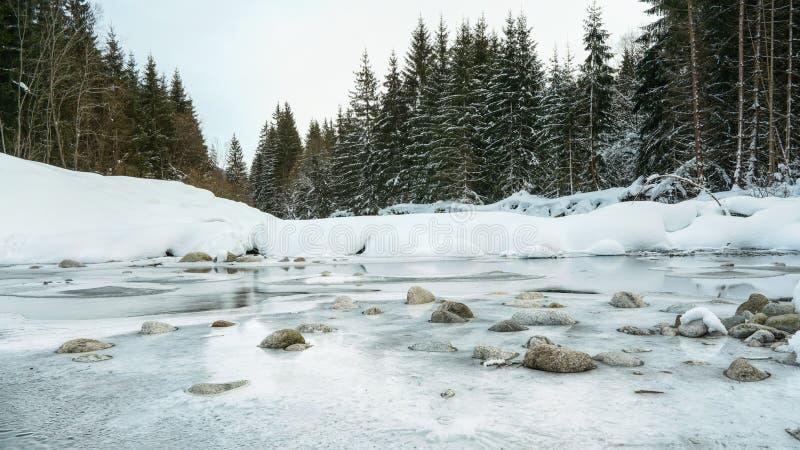 在一条冻森林河的早晨,完全地盖用冰和雪,可看见流动的水仅小的补丁  免版税库存照片