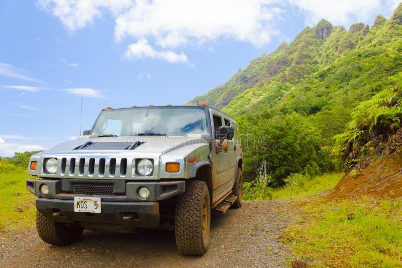 在一条土路的发嗡嗡声的东西在kaawa谷奥阿胡岛夏威夷在夏天在一个晴天 免版税库存图片