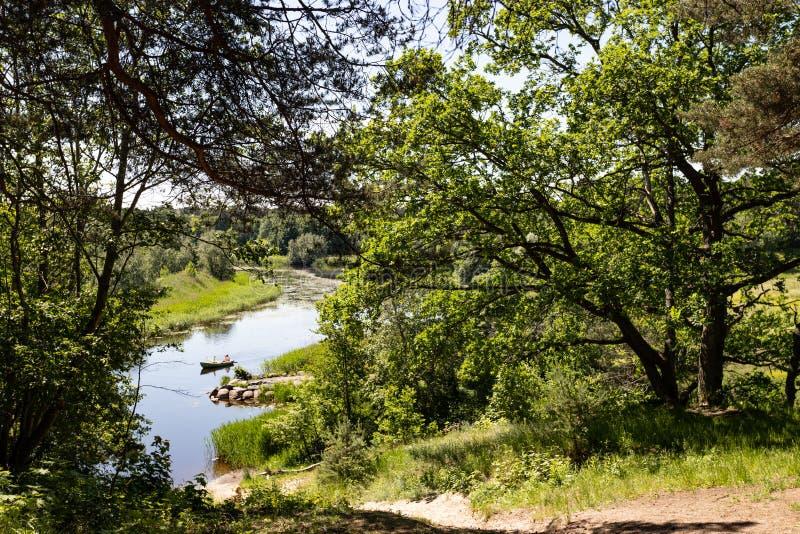 在一条安静的森林地河的一艘游船在夏天 库存图片